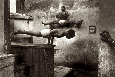 yogi.fw.png