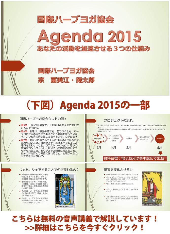 agenda2015_lec.jpg
