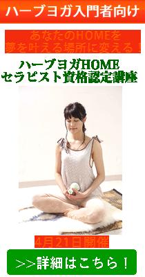 shisebi_tab01.jpg