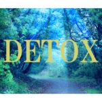 第31回 毒素とは何か?デトックスとは何か?