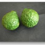 頭頂のチャクラを癒す柑橘のハーブボールの作り方【ハーブボールマイスター講座 第19回】
