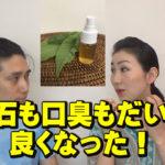 ワンちゃんの口臭・歯石・歯茎の腫れための自然なケアの秘訣!【前編】