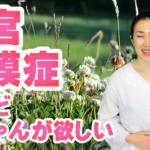 【瞑想法 第4弾】子宮内膜症だけど赤ちゃんが欲しい人のハーブヨガの妊活瞑想