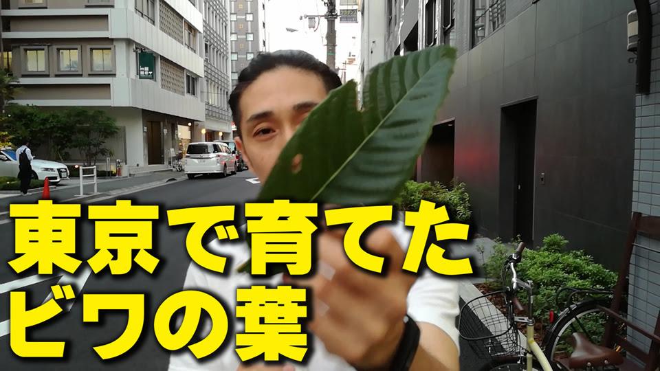 biwa-special01