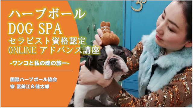 【オンライン講座】ハーブボールドッグSPAセラピスト養成講座